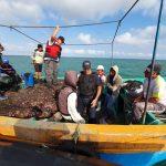 Piura: Recuperan más de 12 toneladas de recursos hidrobiológicos extraídos ilegalmente