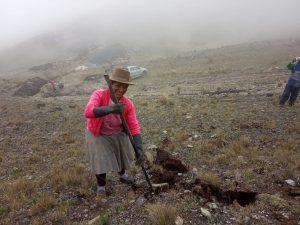 Mujeres trabajan en la construccion de qochas del Minagri
