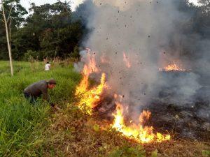 Establecerán hoja de ruta para gestionar incendios forestales