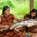 Minagri cofinanció S/66 millones para productores del Vraem en 2019