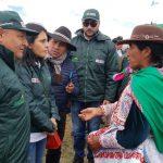 Arequipa: Instalan 30 cobertizos para proteger ganado de alpaca