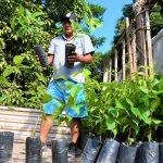 Impulsan la reforestación con árboles nativos en San Martín