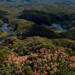Perú cuenta con reglamento de la Ley Marco sobre Cambio Climático