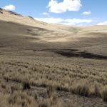 Reconocen dos nuevas áreas de conservación en el Cusco