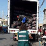 Intervienen camión con 25 toneladas de carbón de algarrobo