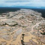 La recuperación plena de ecosistemas degradados puede durar siglos