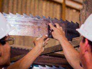 Refuerzan capacidad y competitividad de la industria madedera en Ucayali