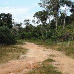 Reconocen nueva Área de Conservación Privada en Loreto