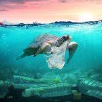 Cada año se vierten 10 millones de toneladas de plástico en los océanos