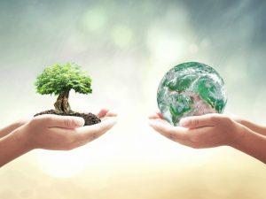Biodiversidad del planeta Tierra en peligro de desaparecer