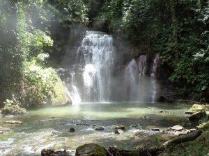 Loreto pasa a ser la región con mayor zonificación forestal a nivel nacional