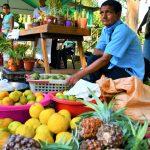 San Martín: Implementarán mercados itinerantes