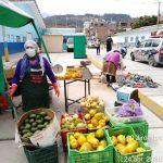 Antamina apoya reactivación económica de productores en área de influencia operativa