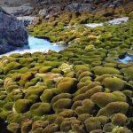 Primera ola de calor documentada en la Antártida Oriental