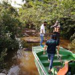 Loreto: Intervienen madera de procedencia ilegal cerca al Caserío Limón