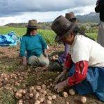 Plantean acciones para proteger a comunidades nativas e indígenas