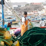 Destinarán S/17 millones para otorgar créditos en actividades de pesca artesanal y acuicultura