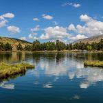 Junín: Laguna muestra mejoras en el color del agua y biodiversidad