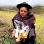 Apoyarán a productores de Huancavelica que realizan alcohol de papa
