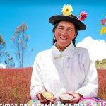 Papa nativa de Huancavelica es exportada hacia Europa