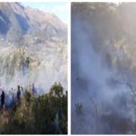 Extinguen tres incendios forestales en Puno, Apurímac y Tacna