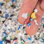 Los microplásticos son la 'pandemia' del siglo XXI