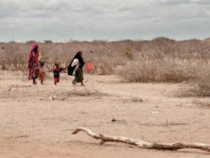 «El Niño» se agravará en el océano Índico por crisis climática