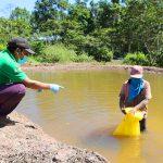 Satipo: Siembran 25 mil peces amazónicos para fortalecer seguridad alimentaria