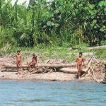 Juntan firmas para proteger a pueblos indígenas en situación de aislamiento