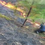 Cusco: Extinguen incendio forestal en Quellouno