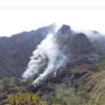 Puno: 140 incendios sobre cobertura forestal en mayo