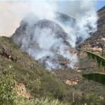 Extinguen cinco incendios forestales en Amazonas