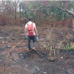 Resaltan importancia de una agenda comunicacional sobre bosques tropicales