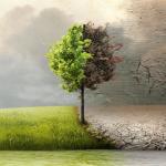 Aseguran que COVID-19 acelera compromisos ambientales