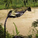 Líderes indígenas y religiosos articulan acciones contra la deforestación en Amazonas