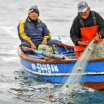 Organizaciones pesqueras piden suspensión de temporada 2020 debido al Covid-19