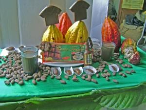 Desde el 2003, el PDA ha promovido 6 mil hectáreas de cacao en Tocache